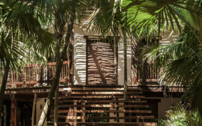 Tulum Treehouse Hotel Offers Exotic Getaway